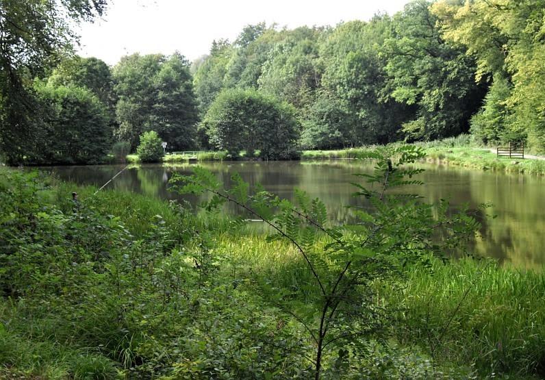 étang de kédange